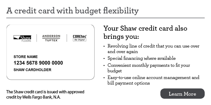 A Credit Card with budget flexibility